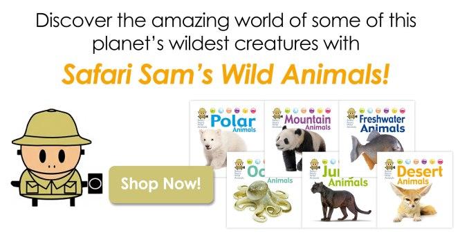safariSamCarousel